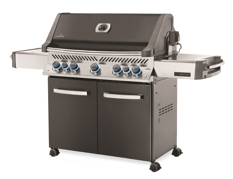 Ambiance 665 Gas Grill by Napoleon