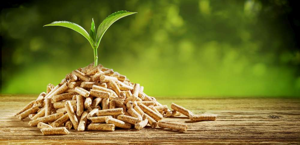 Pellets are ecological to burn. Why burn wood pellets?