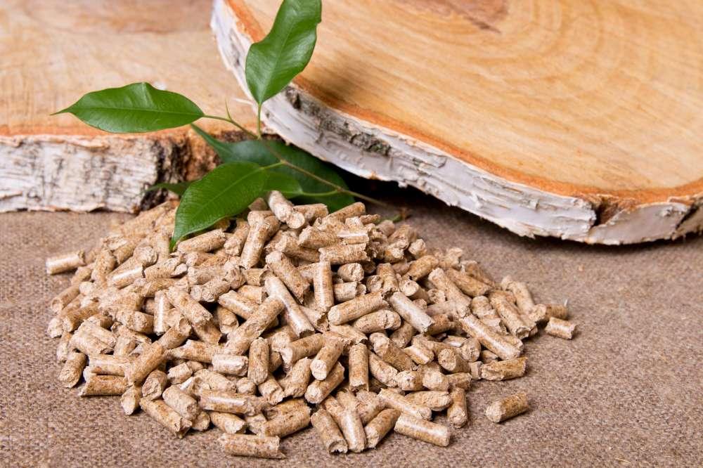 Pellets or wood for fuel? What fuel should I choose?