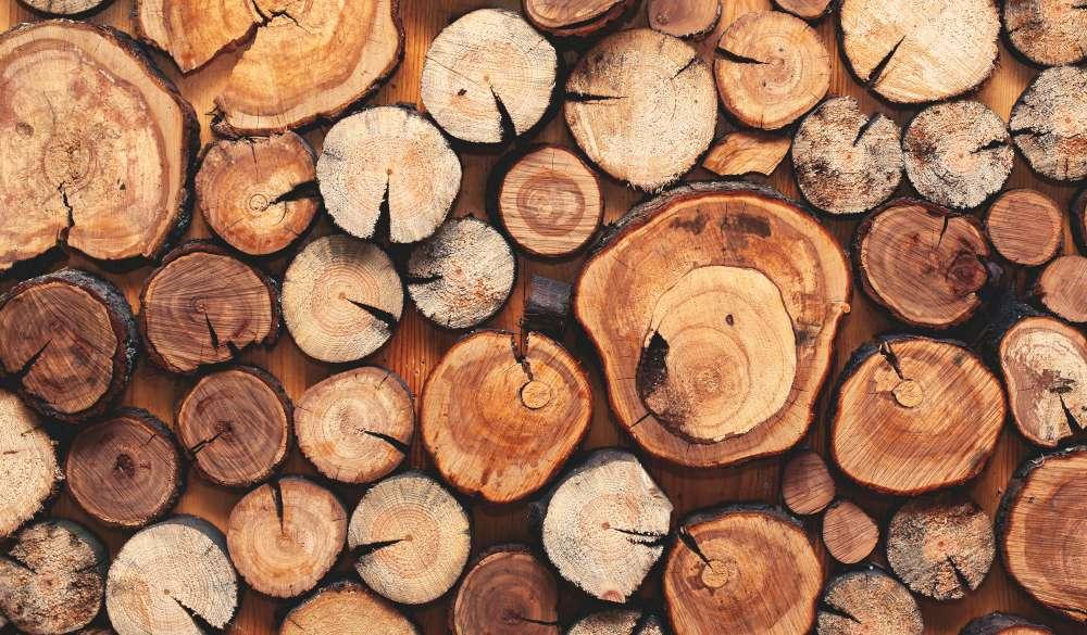 Wood logs for fuel? What fuel should I choose?